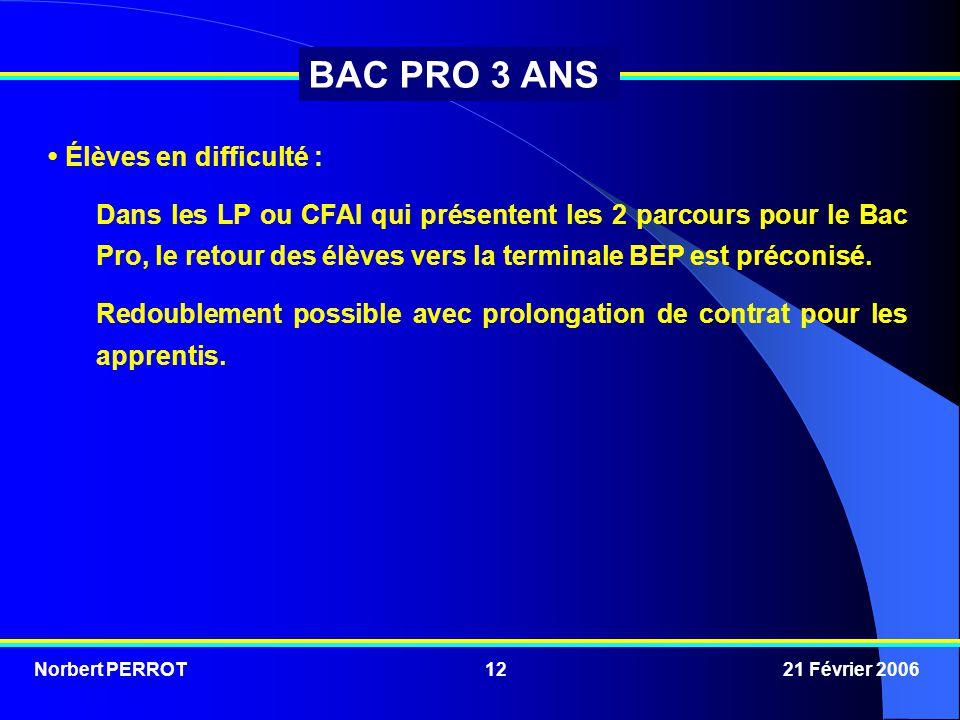 Norbert PERROT 21 Février 200612 BAC PRO 3 ANS Élèves en difficulté : Dans les LP ou CFAI qui présentent les 2 parcours pour le Bac Pro, le retour des