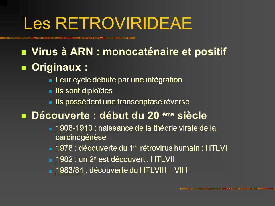 Les RETROVIRIDEAE Virus à ARN : monocaténaire et positif Originaux : Leur cycle débute par une intégration Ils sont diploïdes Ils possèdent une transc