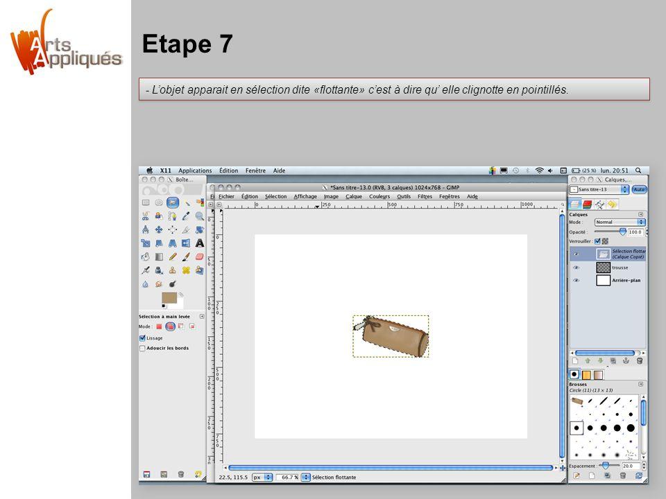Etape 7 - L'objet apparait en sélection dite «flottante» c'est à dire qu' elle clignotte en pointillés.