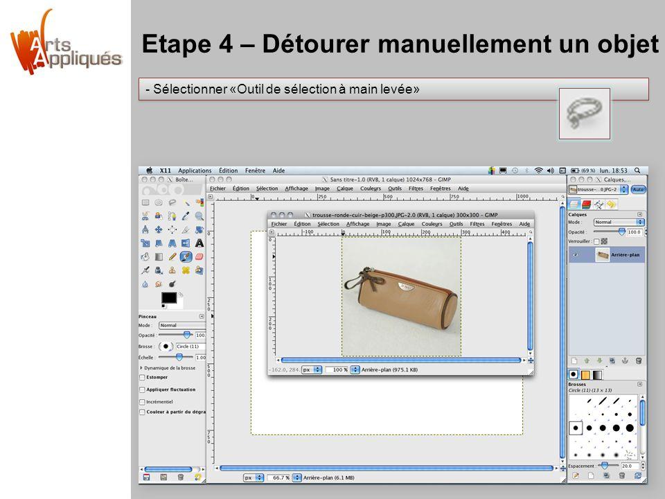 Etape 4 – Détourer manuellement un objet - Sélectionner «Outil de sélection à main levée»