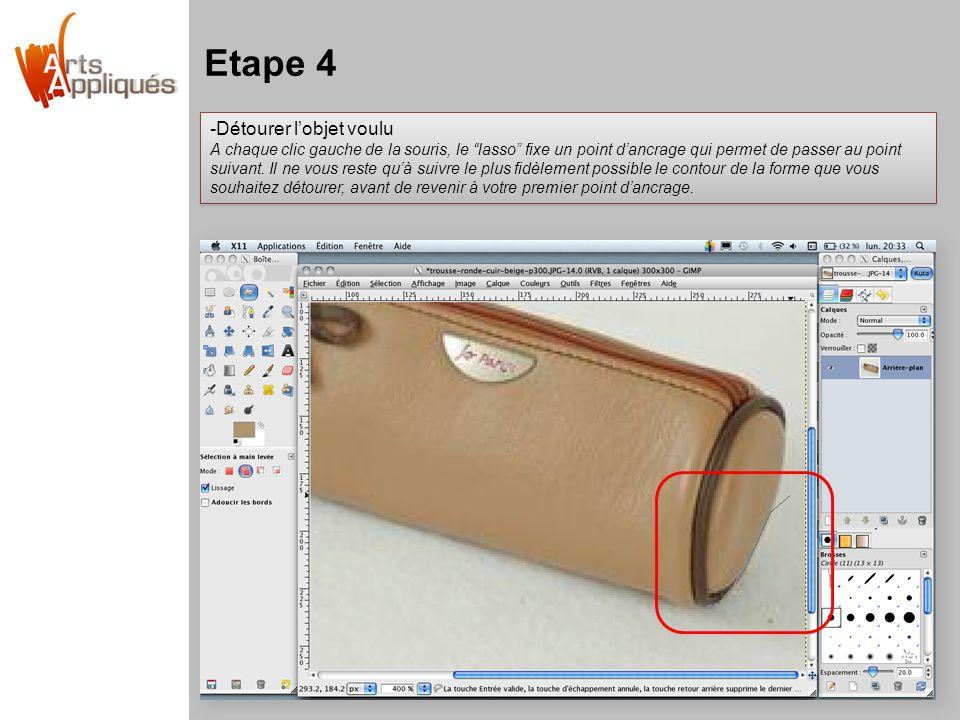 Etape 4 -Détourer l'objet voulu A chaque clic gauche de la souris, le lasso fixe un point d'ancrage qui permet de passer au point suivant.