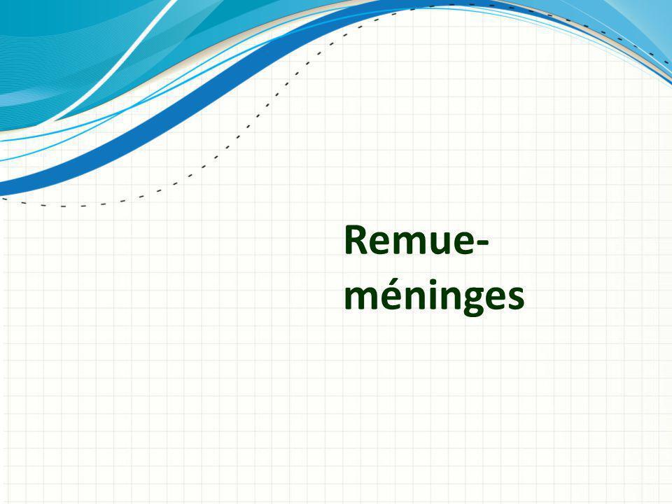 Remue- méninges