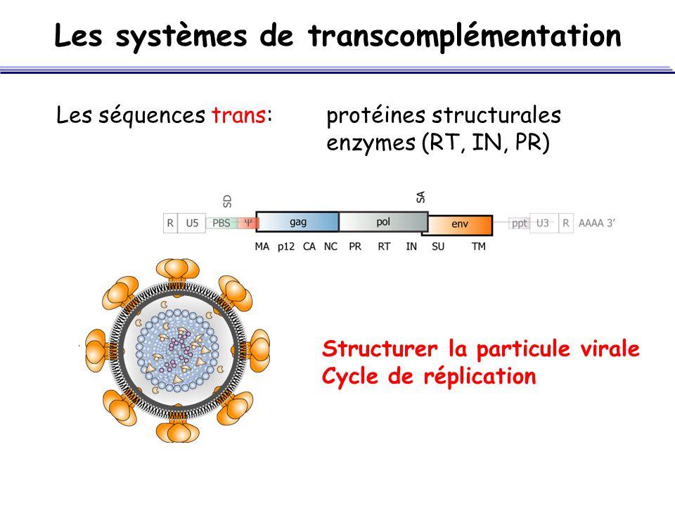 Les systèmes de transcomplémentation Les séquences trans:protéines structurales enzymes (RT, IN, PR) Structurer la particule virale Cycle de réplicati