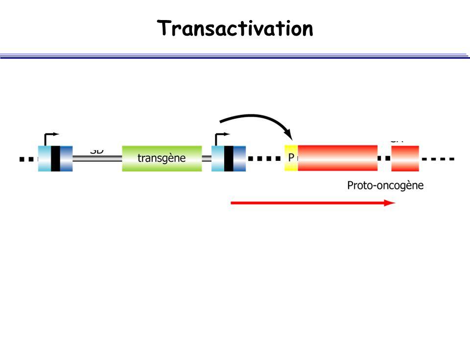 Transactivation