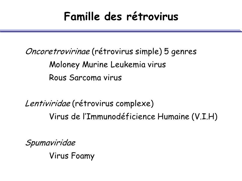 Famille des rétrovirus Oncoretrovirinae (rétrovirus simple) 5 genres Moloney Murine Leukemia virus Rous Sarcoma virus Lentiviridae (rétrovirus complex
