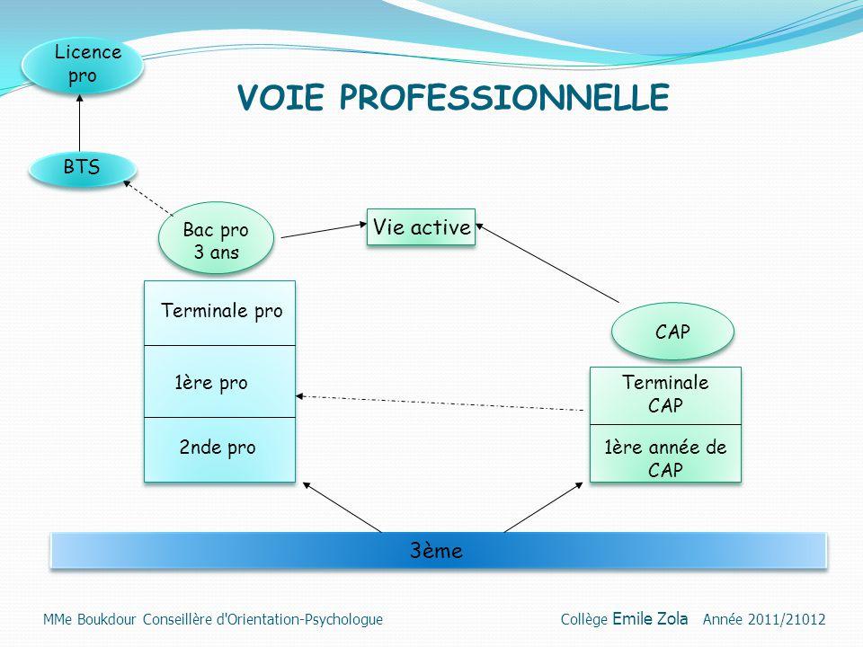 VOIE PROFESSIONNELLE 3ème 2nde pro 1ère pro Terminale pro Bac pro 3 ans 1ère année de CAP Terminale CAP CAP BTS Licence pro Vie active MMe Boukdour Co