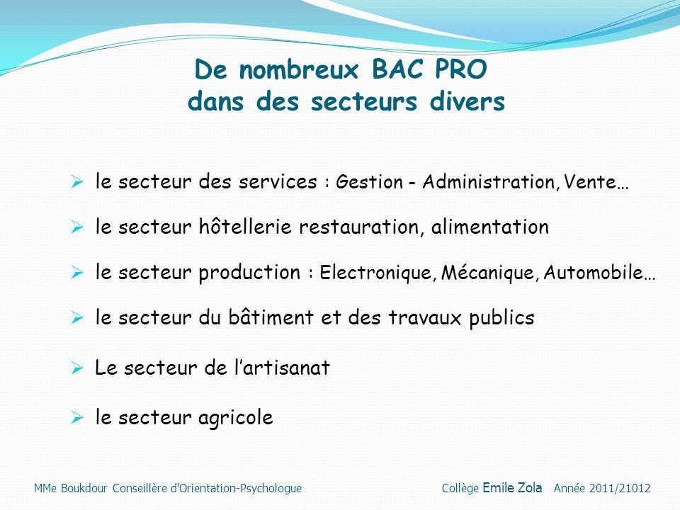 De nombreux BAC PRO dans des secteurs divers  le secteur des services : Gestion - Administration, Vente…  le secteur hôtellerie restauration, alimen