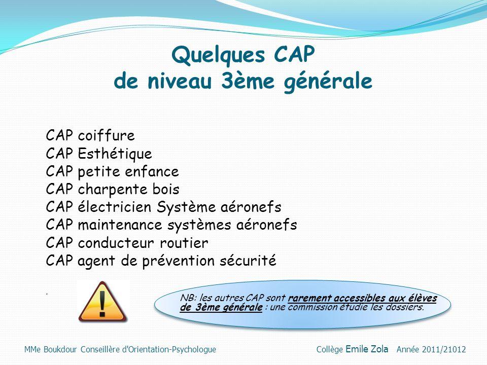 Quelques CAP de niveau 3ème générale CAP coiffure CAP Esthétique CAP petite enfance CAP charpente bois CAP électricien Système aéronefs CAP maintenanc