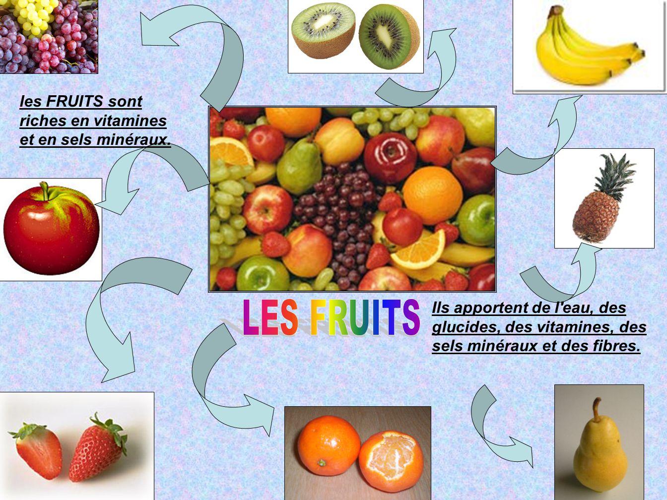 les FRUITS sont riches en vitamines et en sels minéraux. Ils apportent de l'eau, des glucides, des vitamines, des sels minéraux et des fibres.