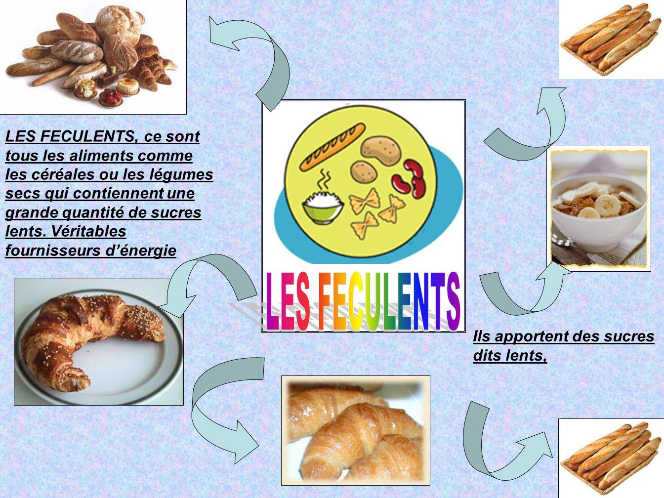 LES FECULENTS, ce sont tous les aliments comme les céréales ou les légumes secs qui contiennent une grande quantité de sucres lents. Véritables fourni