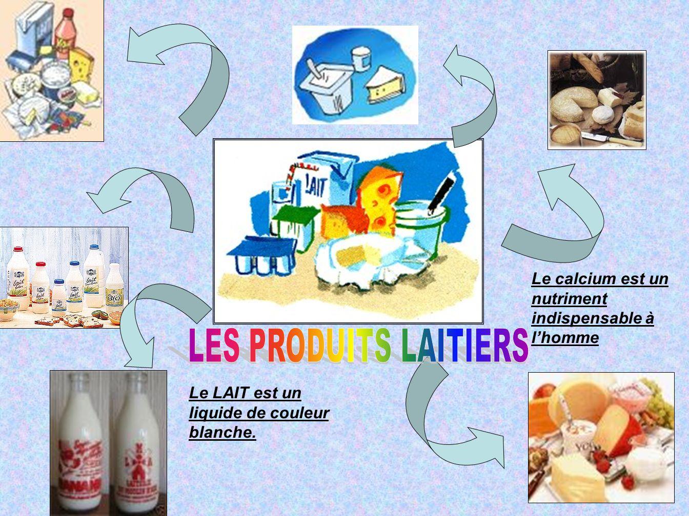 Le LAIT est un liquide de couleur blanche. Le calcium est un nutriment indispensable à l'homme