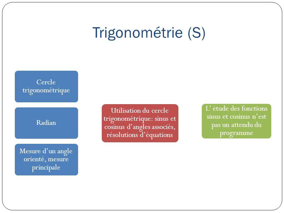 Trigonométrie (S) Cercle trigonométrique Utilisation du cercle trigonométrique: sinus et cosinus d'angles associés, résolutions d'équations L' étude d