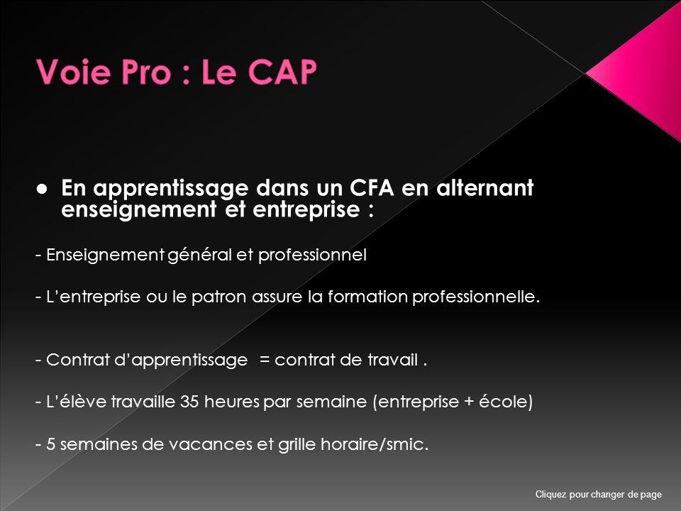 En apprentissage dans un CFA en alternant enseignement et entreprise : - Enseignement général et professionnel - L'entreprise ou le patron assure la formation professionnelle.