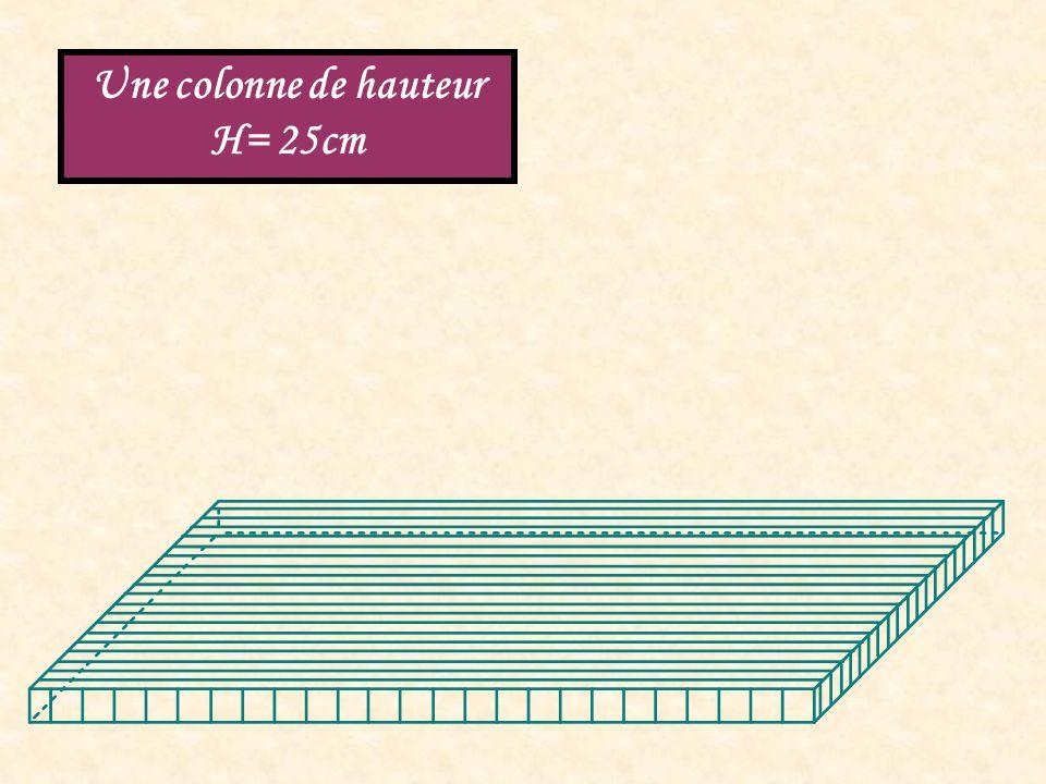 Une colonne de hauteur H= 25cm