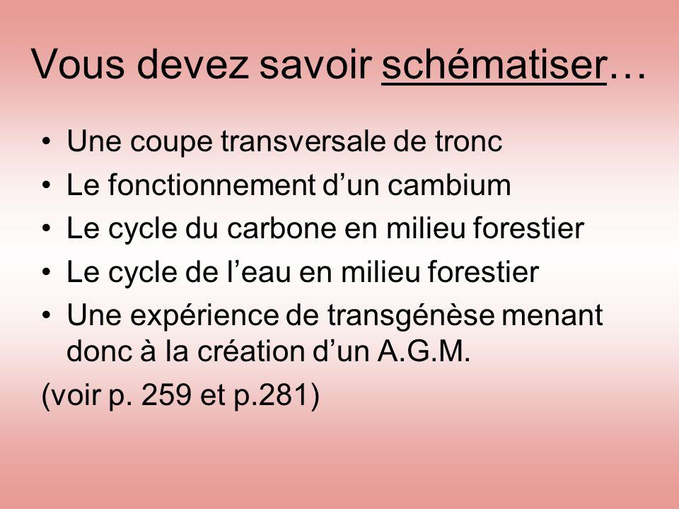 Vous devez savoir schématiser… Une coupe transversale de tronc Le fonctionnement d'un cambium Le cycle du carbone en milieu forestier Le cycle de l'ea
