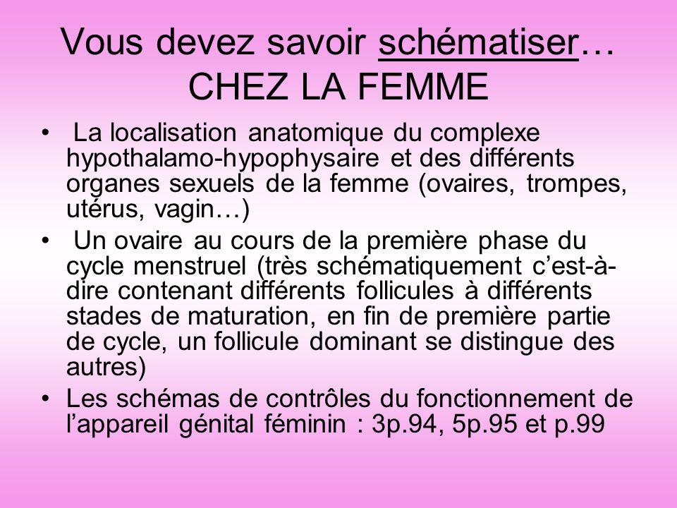 Vous devez savoir schématiser… CHEZ LA FEMME La localisation anatomique du complexe hypothalamo-hypophysaire et des différents organes sexuels de la f