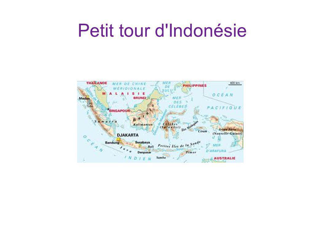 Petit tour d Indonésie