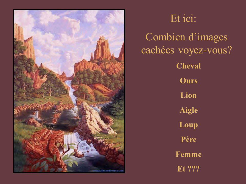 Et ici: Combien d'images cachées voyez-vous? Cheval Ours Lion Aigle Loup Père Femme Et ???