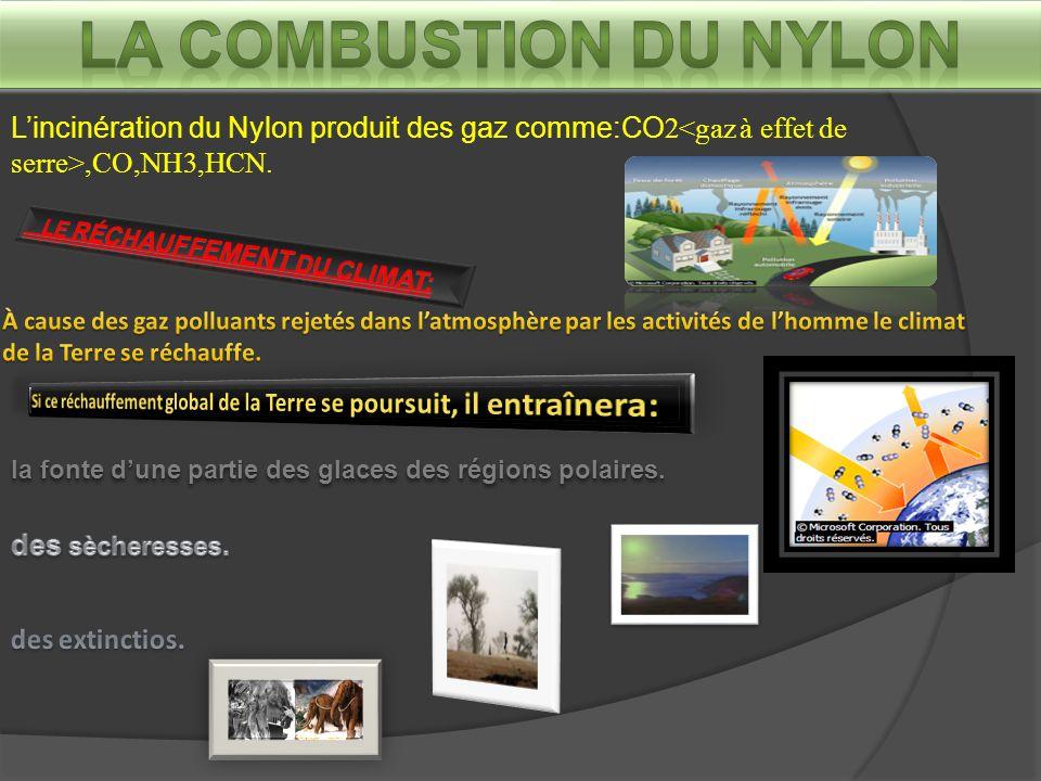 L'incinération du Nylon produit des gaz comme:CO2,CO,NH3,HCN.