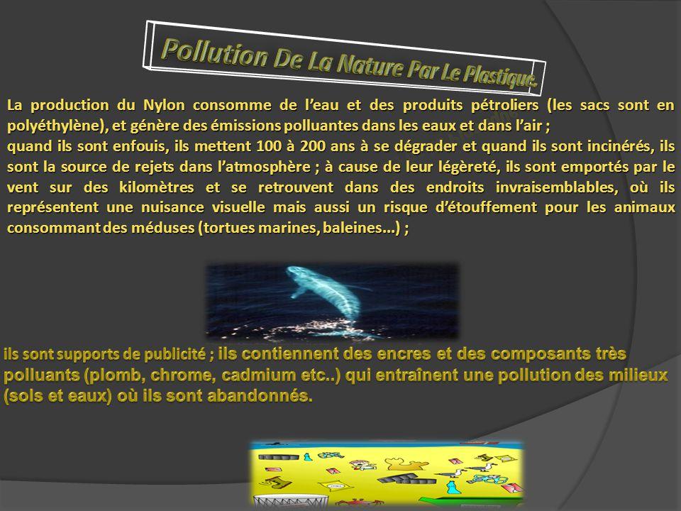 La production du Nylon consomme de l'eau et des produits pétroliers (les sacs sont en polyéthylène), et génère des émissions polluantes dans les eaux et dans l'air ; quand ils sont enfouis, ils mettent 100 à 200 ans à se dégrader et quand ils sont incinérés, ils sont la source de rejets dans l'atmosphère ; à cause de leur légèreté, ils sont emportés par le vent sur des kilomètres et se retrouvent dans des endroits invraisemblables, où ils représentent une nuisance visuelle mais aussi un risque d'étouffement pour les animaux consommant des méduses (tortues marines, baleines...) ;