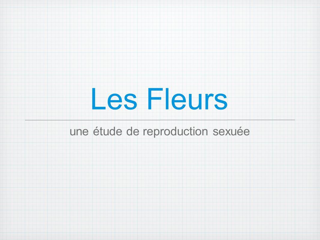 Les Fleurs une étude de reproduction sexuée