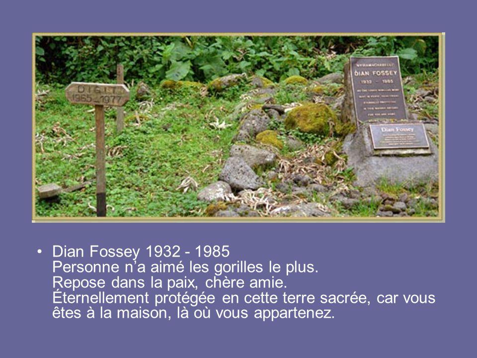 Dian Fossey 1932 - 1985 Personne n'a aimé les gorilles le plus. Repose dans la paix, chère amie. Éternellement protégée en cette terre sacrée, car vou