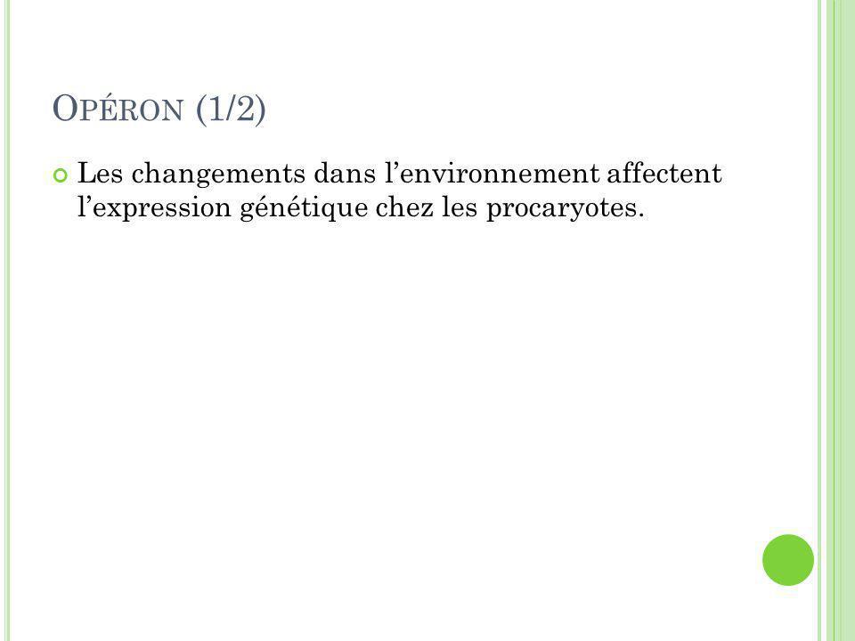 O PÉRON (1/2) Les changements dans l'environnement affectent l'expression génétique chez les procaryotes.