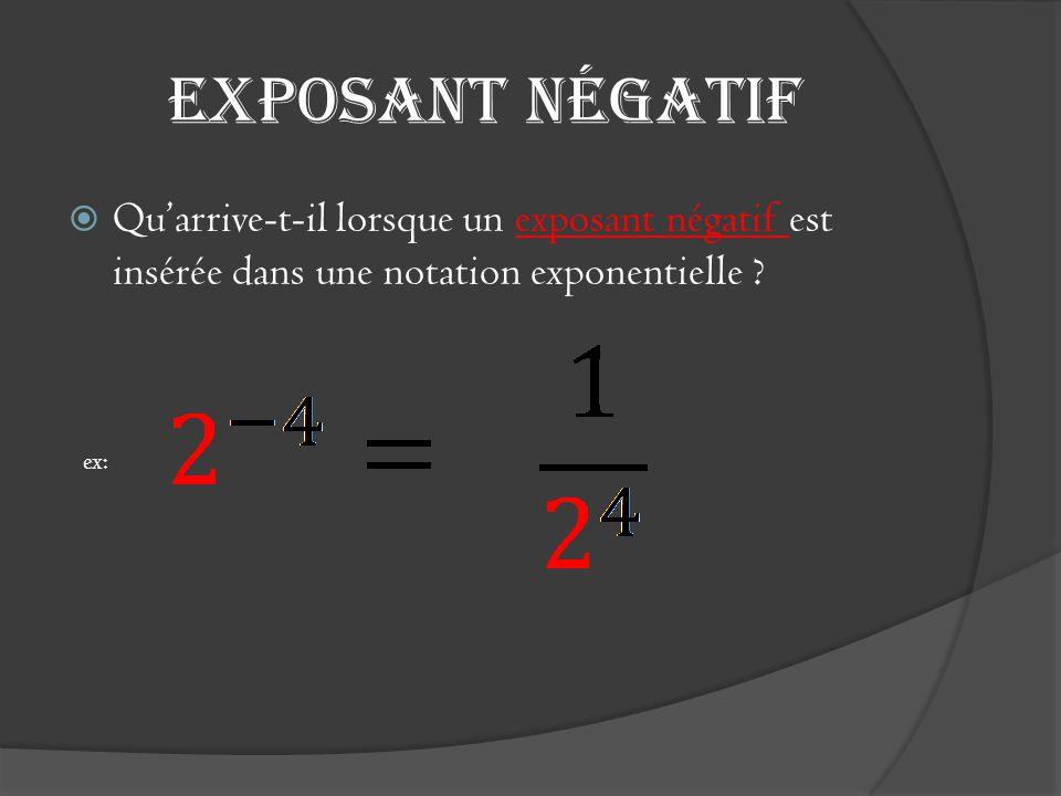 Exposant négatif  Qu'arrive-t-il lorsque un exposant négatif est insérée dans une notation exponentielle ? ex: