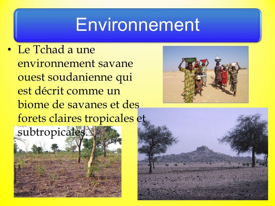 Environnement Le Tchad a une environnement savane ouest soudanienne qui est décrit comme un biome de savanes et des forets claires tropicales et subtr