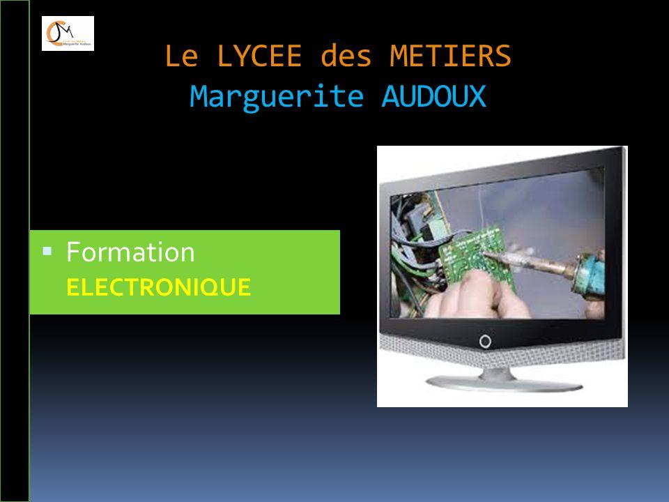 Le LYCEE des METIERS Marguerite AUDOUX  Formation ELECTRONIQUE