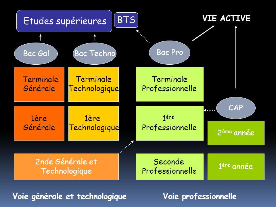 Seconde Professionnelle 1 ère Professionnelle Bac Pro VIE ACTIVE 1 ère année 2 ème année CAP 1ère Technologique Terminale Technologique Bac Techno 1èr