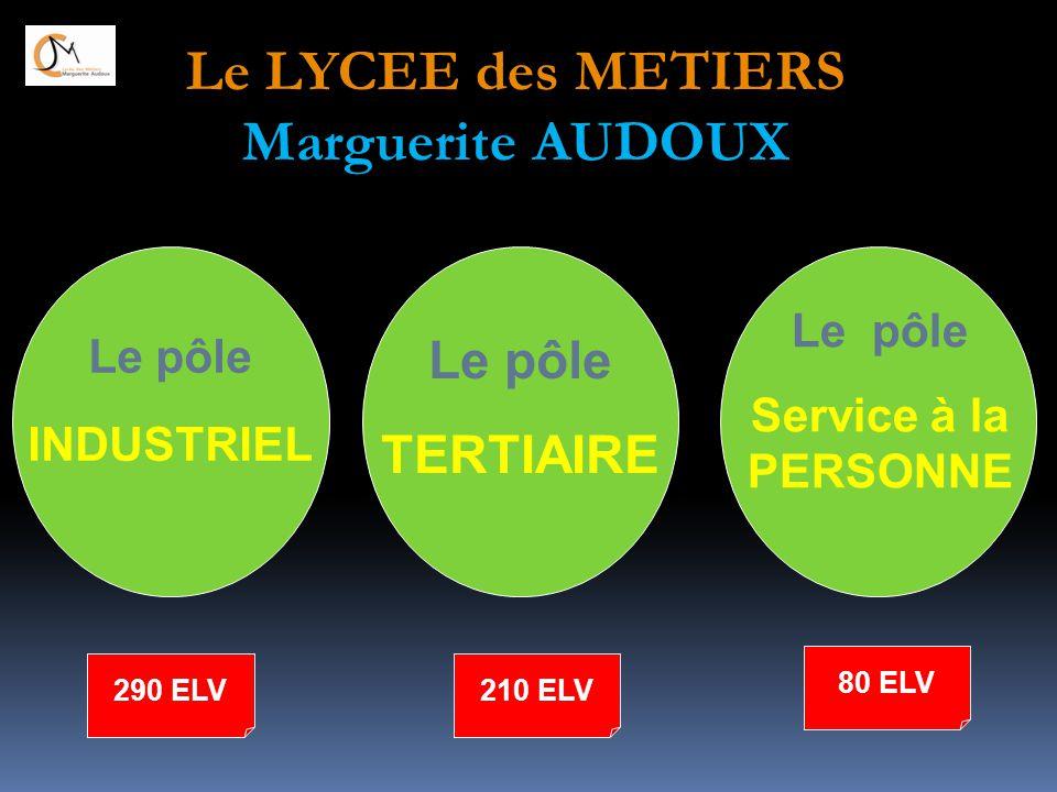 Le pôle INDUSTRIEL Le pôle TERTIAIRE Le pôle Service à la PERSONNE 290 ELV 80 ELV 210 ELV Le LYCEE des METIERS Marguerite AUDOUX