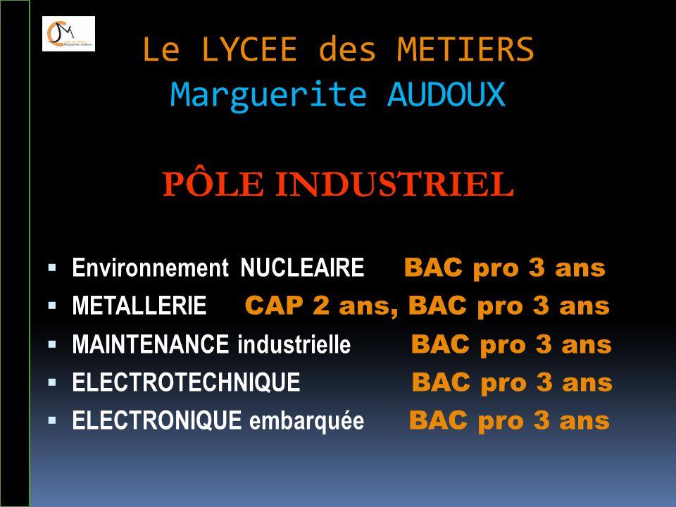  Environnement NUCLEAIRE BAC pro 3 ans  METALLERIE CAP 2 ans, BAC pro 3 ans  MAINTENANCE industrielle BAC pro 3 ans  ELECTROTECHNIQUE BAC pro 3 an