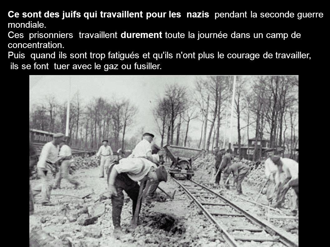 Ce sont des juifs qui travaillent pour les nazis pendant la seconde guerre mondiale. Ces prisonniers travaillent durement toute la journée dans un cam