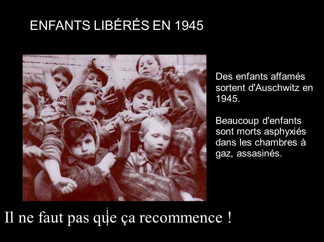 Des enfants affamés sortent d'Auschwitz en 1945. Beaucoup d'enfants sont morts asphyxiés dans les chambres à gaz, assasinés. ENFANTS LIBÉRÉS EN 1945 i