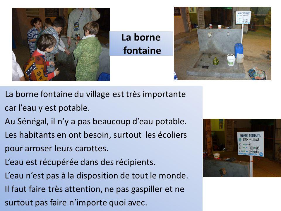 La borne fontaine du village est très importante car l'eau y est potable. Au Sénégal, il n'y a pas beaucoup d'eau potable. Les habitants en ont besoin