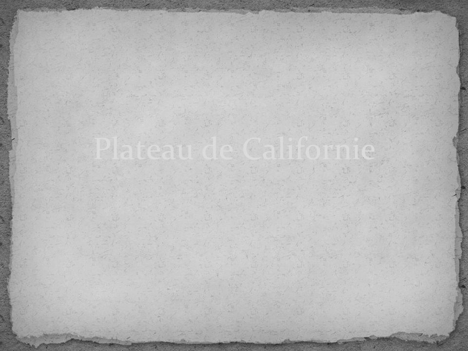 Plateau de Californie