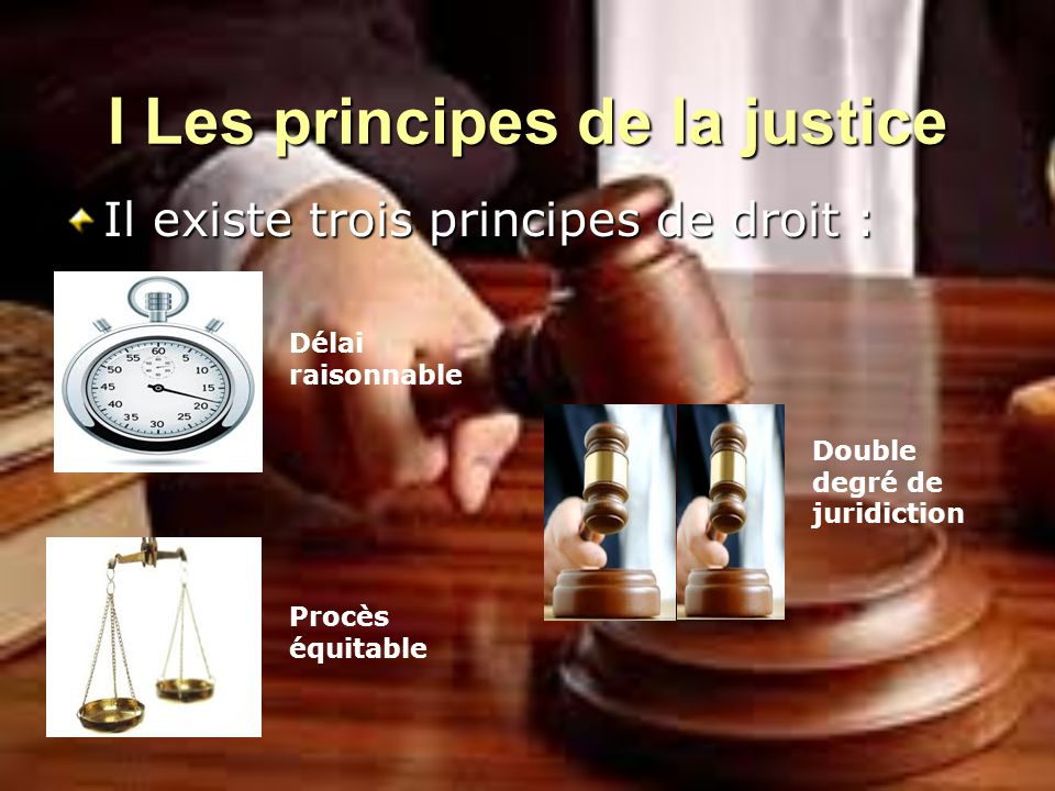 I Les principes de la justice Il existe trois principes de droit : Double degré de juridiction Délai raisonnable Procès équitable