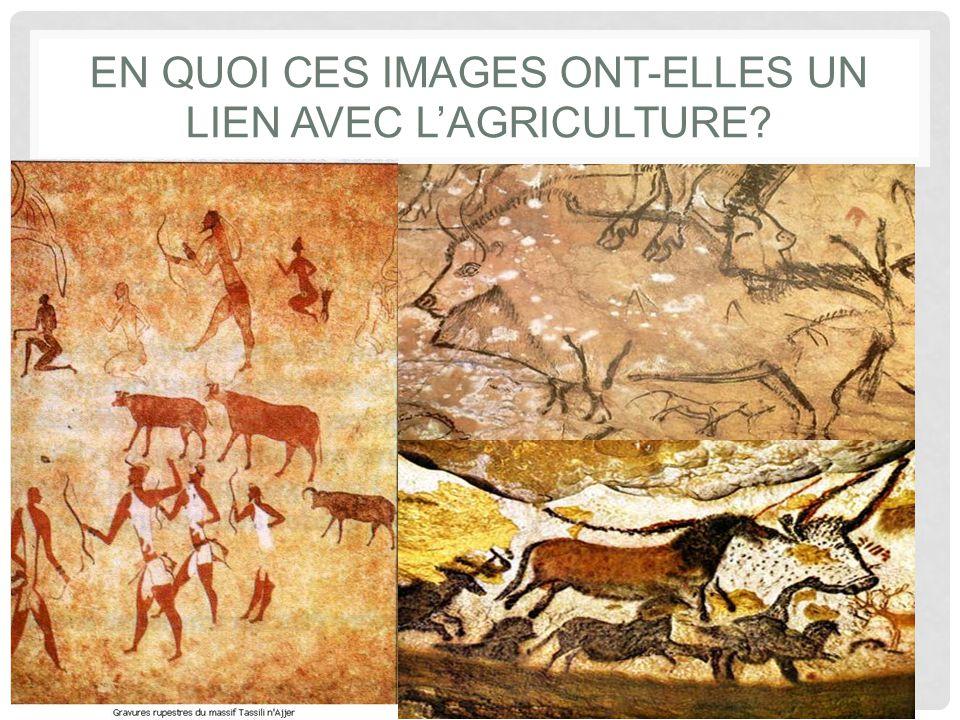 EN QUOI CES IMAGES ONT-ELLES UN LIEN AVEC L'AGRICULTURE?
