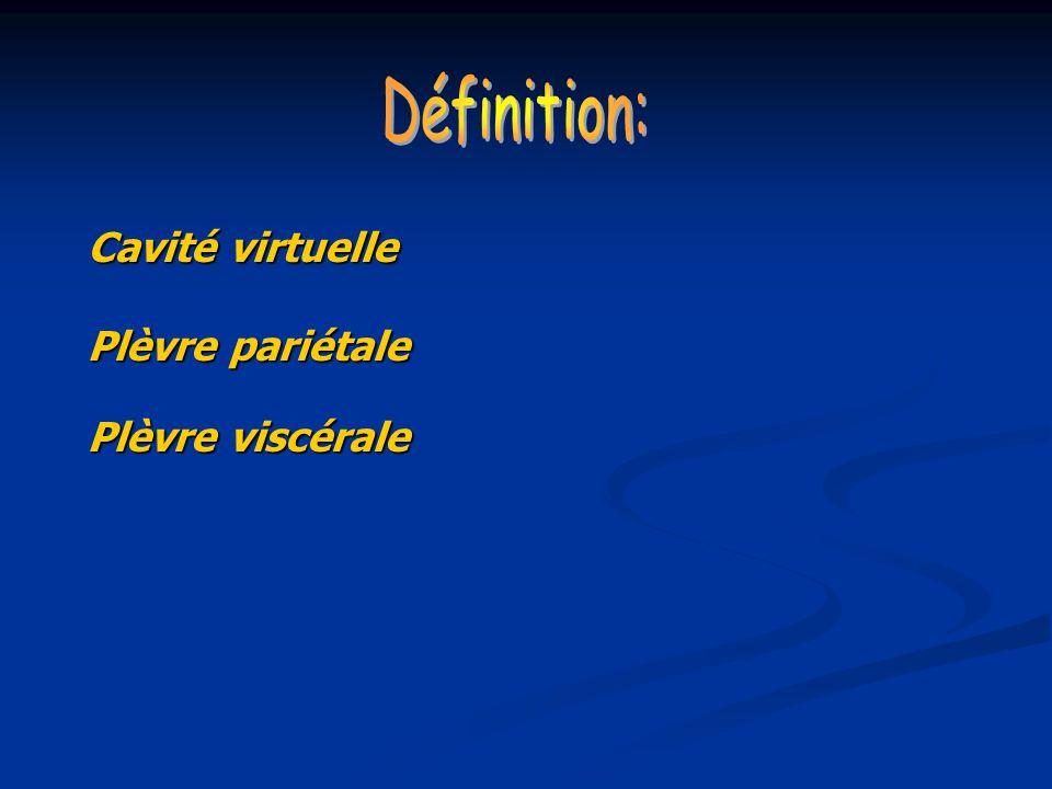 Cavité virtuelle Plèvre pariétale Plèvre viscérale