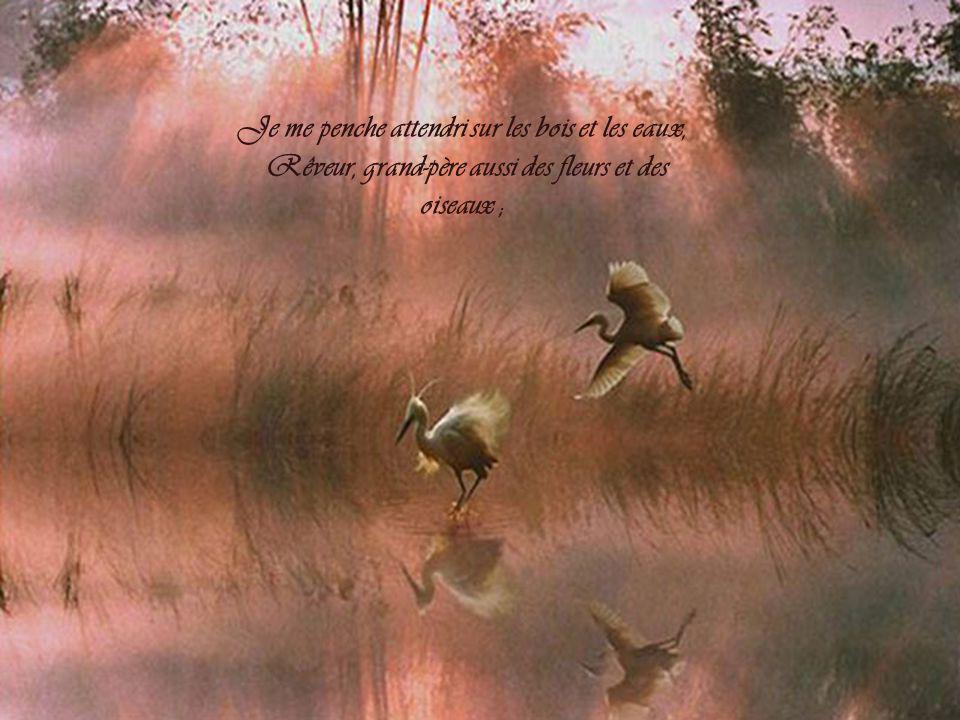 Je me penche attendri sur les bois et les eaux, Rêveur, grand-père aussi des fleurs et des oiseaux ;
