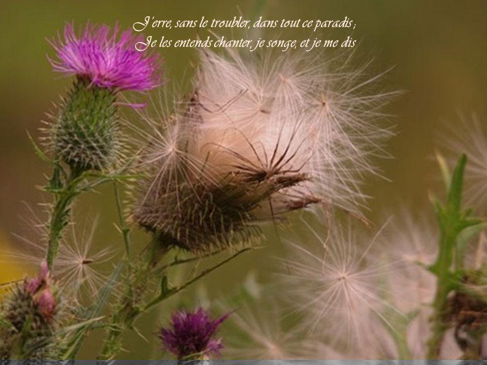 J'erre, sans le troubler, dans tout ce paradis ; Je les entends chanter, je songe, et je me dis