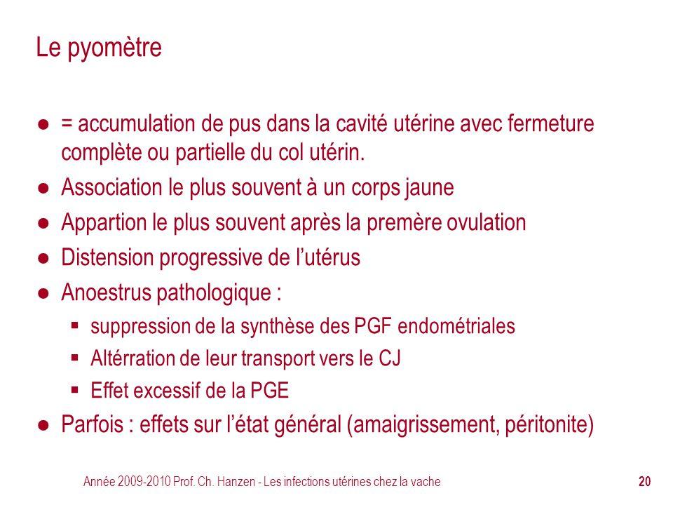 Année 2009-2010 Prof. Ch. Hanzen - Les infections utérines chez la vache 20 Le pyomètre ● = accumulation de pus dans la cavité utérine avec fermeture