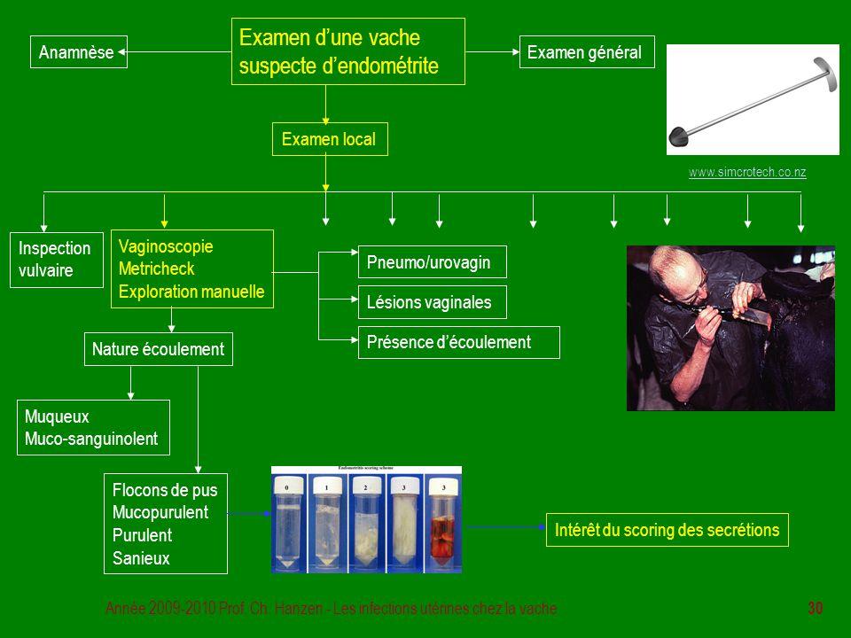 Année 2009-2010 Prof. Ch. Hanzen - Les infections utérines chez la vache 30 Examen d'une vache suspecte d'endométrite Examen général Examen local Insp
