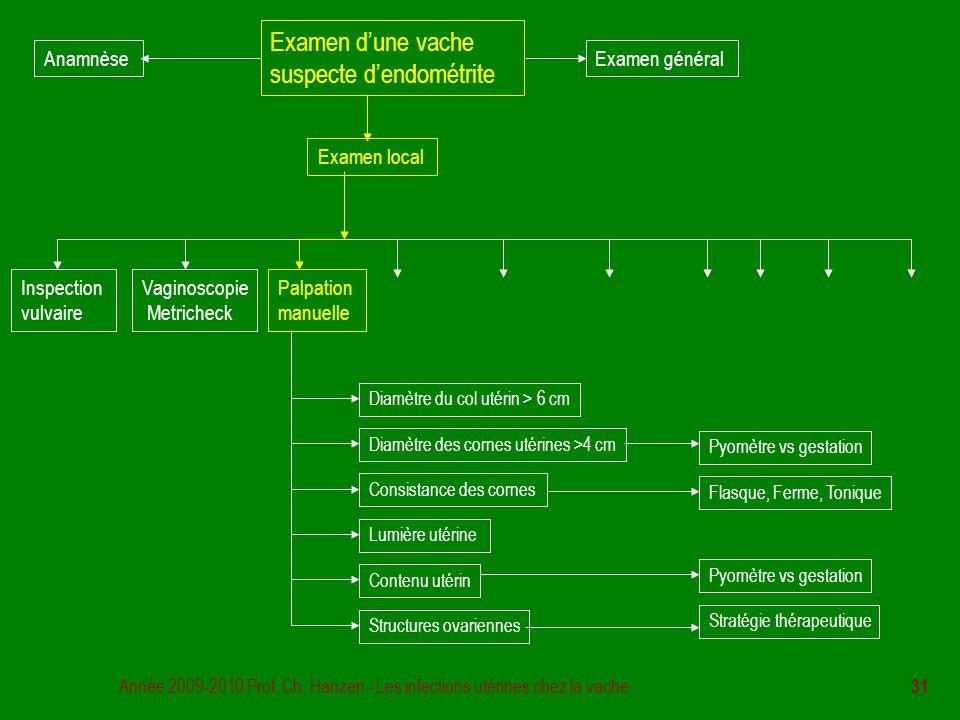 Année 2009-2010 Prof. Ch. Hanzen - Les infections utérines chez la vache 31 Examen d'une vache suspecte d'endométrite Examen général Examen local Insp