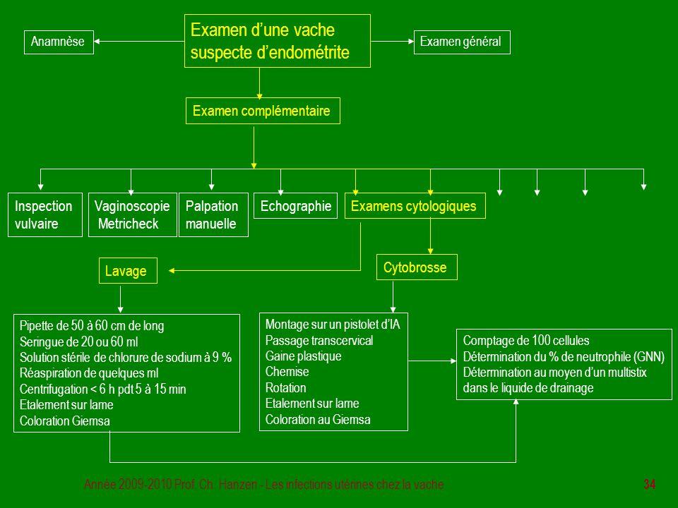 Année 2009-2010 Prof. Ch. Hanzen - Les infections utérines chez la vache 34 Examen d'une vache suspecte d'endométrite Examen général Examen complément