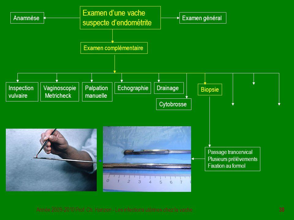 Année 2009-2010 Prof. Ch. Hanzen - Les infections utérines chez la vache 38 Examen d'une vache suspecte d'endométrite Examen général Examen complément
