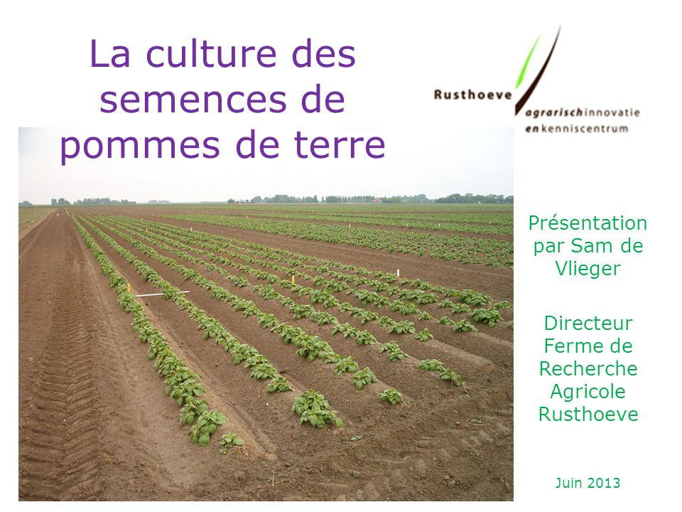 Présentation par Sam de Vlieger Directeur Ferme de Recherche Agricole Rusthoeve Juin 2013 La culture des semences de pommes de terre