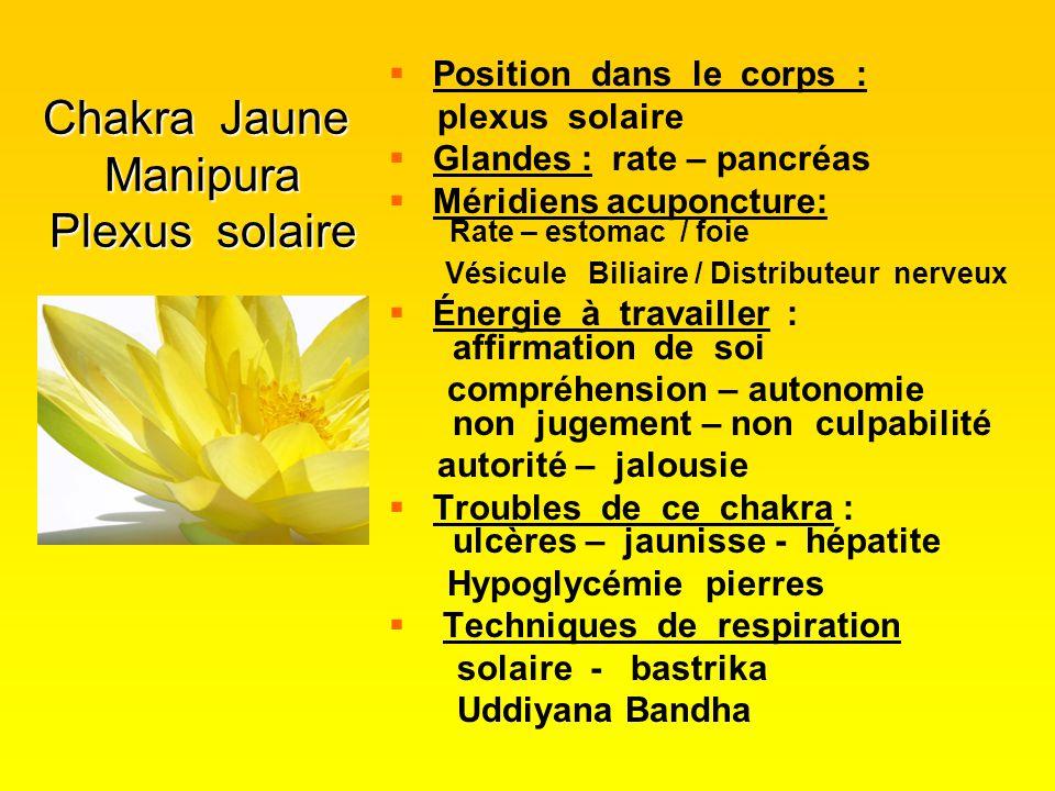 Chakra Jaune Manipura Plexus solaire   Position dans le corps : plexus solaire   Glandes : rate – pancréas   Méridiens acuponcture: Rate – estom