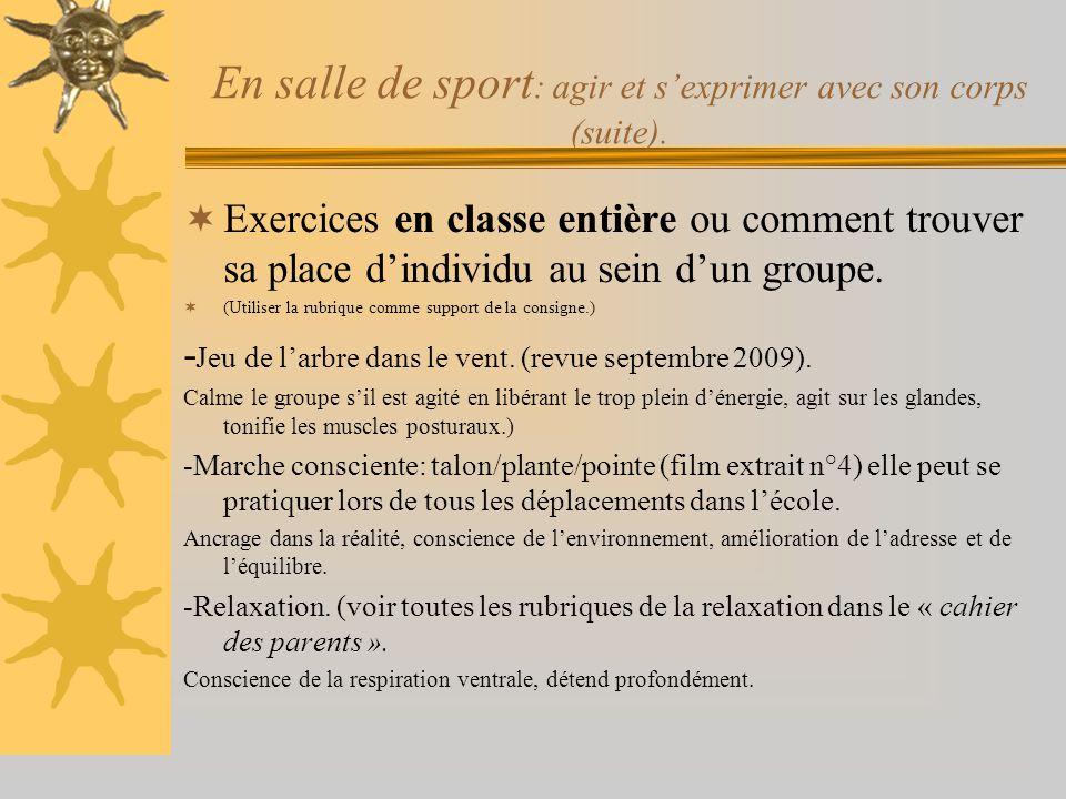 En salle de sport : agir et s'exprimer avec son corps (suite).  Exercices en classe entière ou comment trouver sa place d'individu au sein d'un group